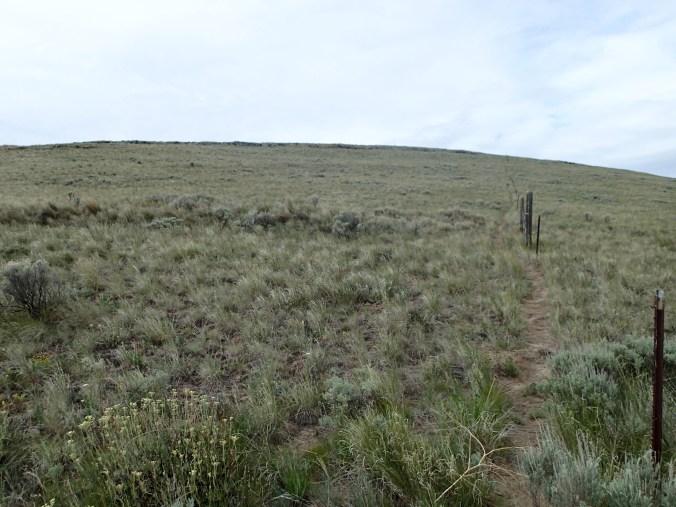 Gracie Point Trail