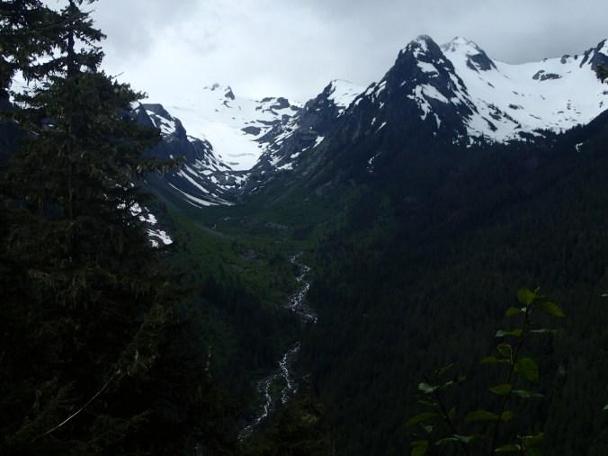White Glacier