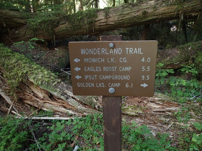 Wonderland Sign At South Mowich River Camp