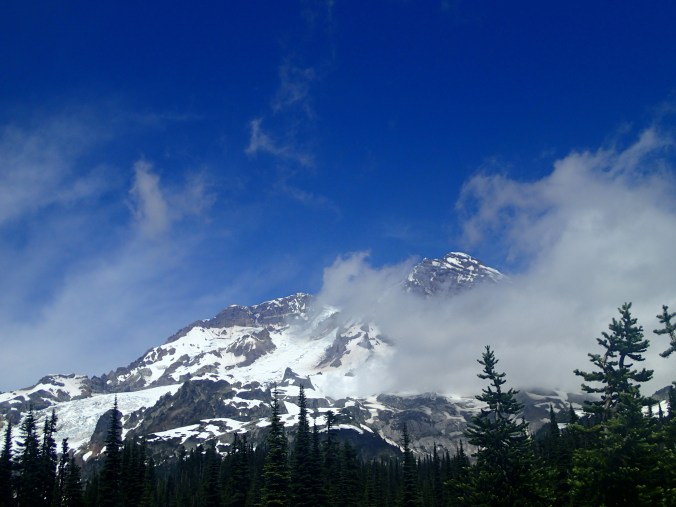 Mount Rainier From Indian Henry's Hunting Ground