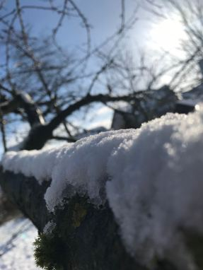 Winterimpressionen 9a (7)