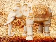 elephants-1400816__180