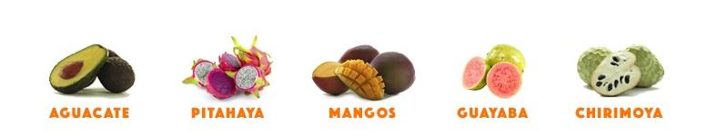 frutas en surtido mangos aguacates pitahaya chirimoya