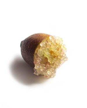 comprar caviar cítrico a domicilio por internet