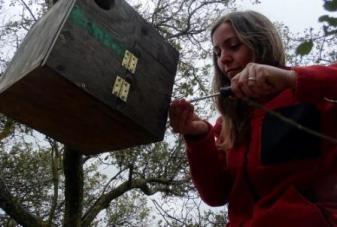 instalando cajas nido para las aves rapaces nocturnas