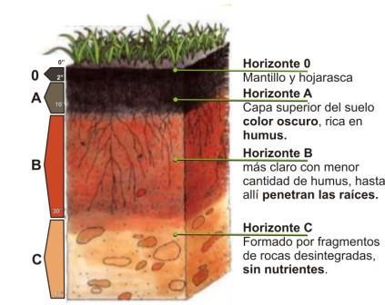 dibujo de las capas del suelo