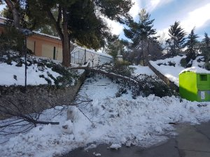 El Temporal Filomena causó muchos daños en Huete y pedanías