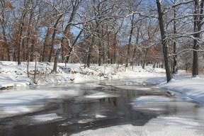 Snowy stream.
