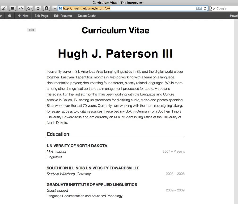 resume profile statement examples volumetrics co