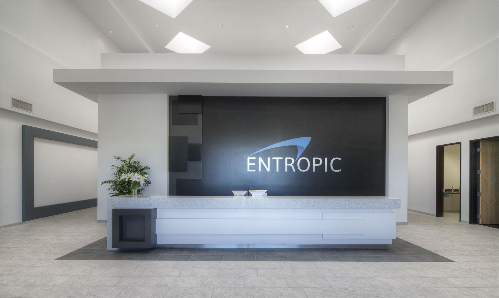 Entropic Communications Now Maxlinear