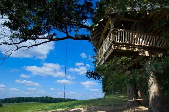 Tree House 33