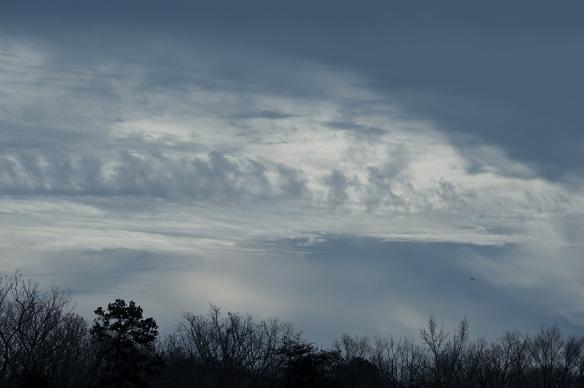 Patuxent Sky