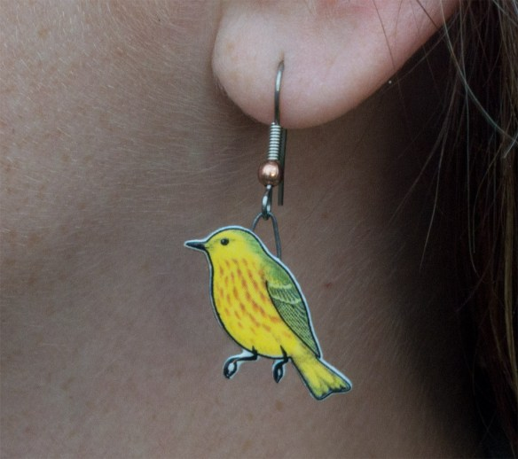 Eared Birder