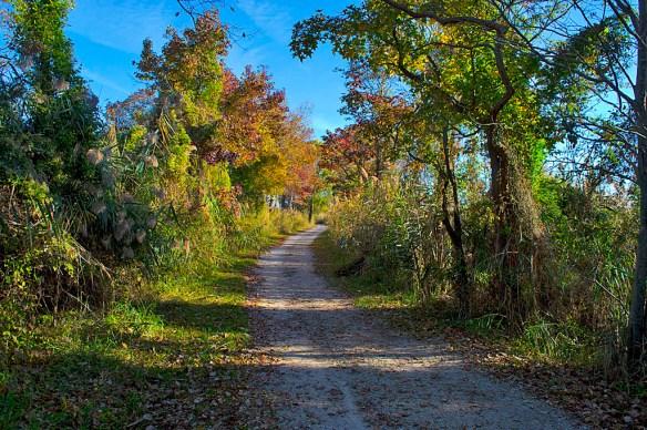 Terrapin Path 1