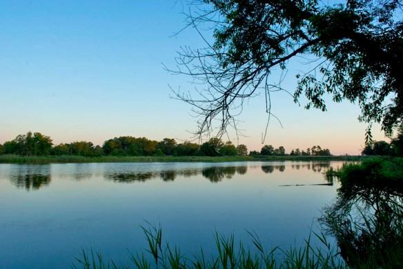 Marsh Pond 16