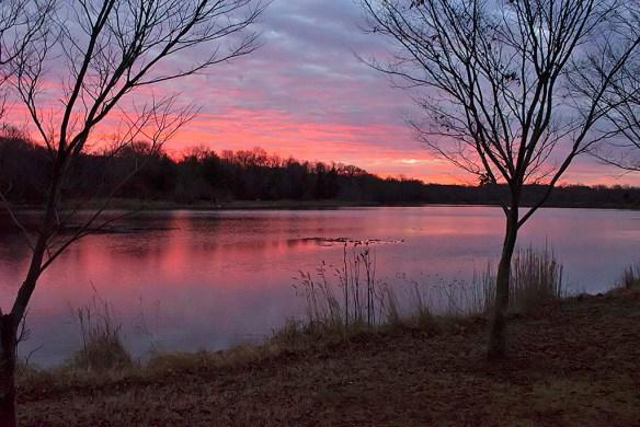 Lake Artemesia 116