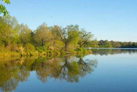 Lake Artemesia 126