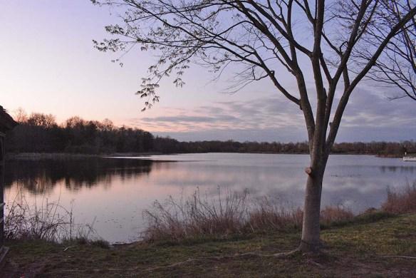 Lake Artemesia 152