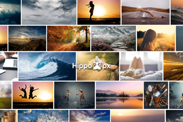 Hippopx 擁有 20 萬張以上的免費圖片,可以依不同尺寸下載