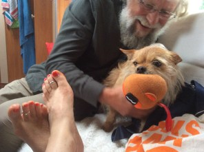 dog with orange ball in mouth being tickled by a bearded man