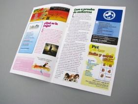 Diseño de boletín y anuncios publicitarios.