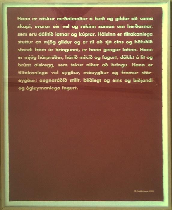 Birgir Andrésson Röskur meðalmaður-1979