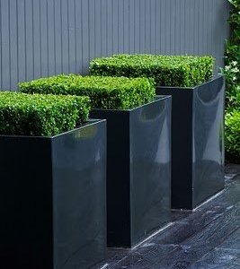 Buxus Hoogglans Polyester Plantenbak
