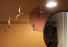 gouden vogels