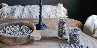 schelpenisolatie en schelpendecoratie