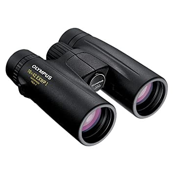 Olympus 10x42 EXWP Binoculars Online India