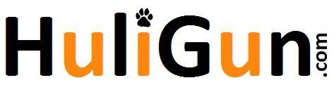 Huligun Logo