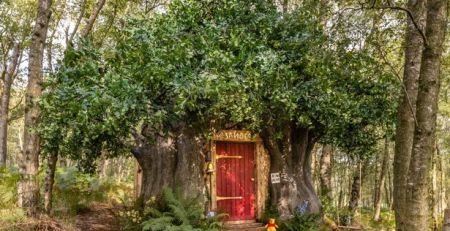 you-can-book-magical-winnie-the-pooh-house-in-a…