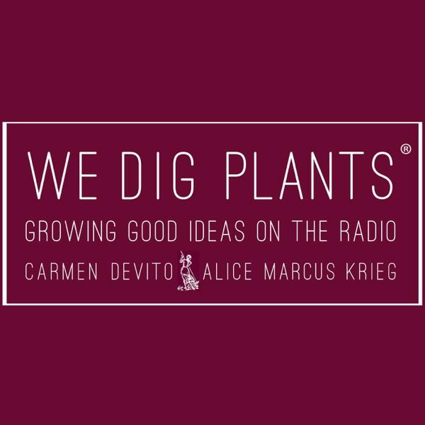 We Dig Plants podcast
