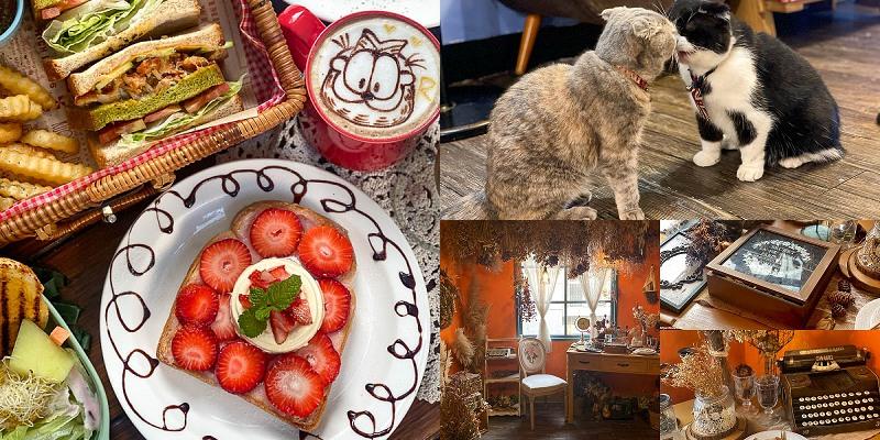 寵物友善餐廳「R-Star Coffee 」R星咖啡!喵星人太療癒,人氣必點野餐籃吐司!草莓吐司新上市!|義大利麵|燉飯|