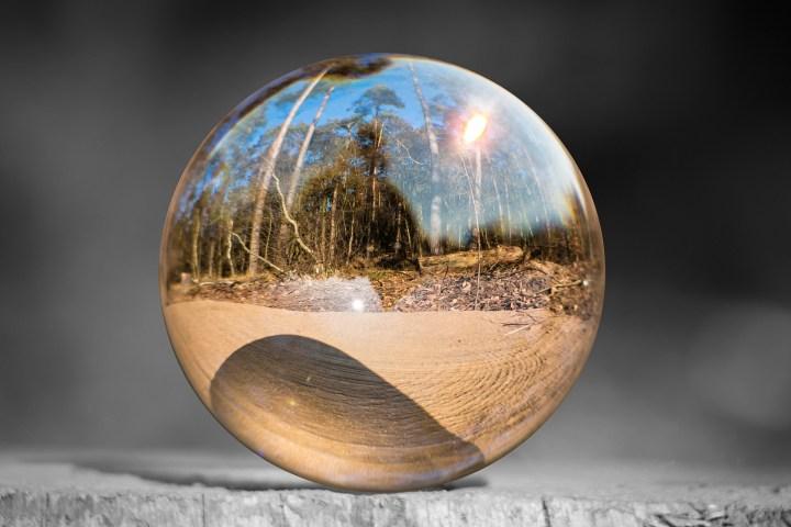 Устойчивое развитие и экология