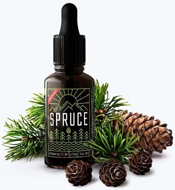 Spruce – Extra Strength 2400 mg CBD Oil