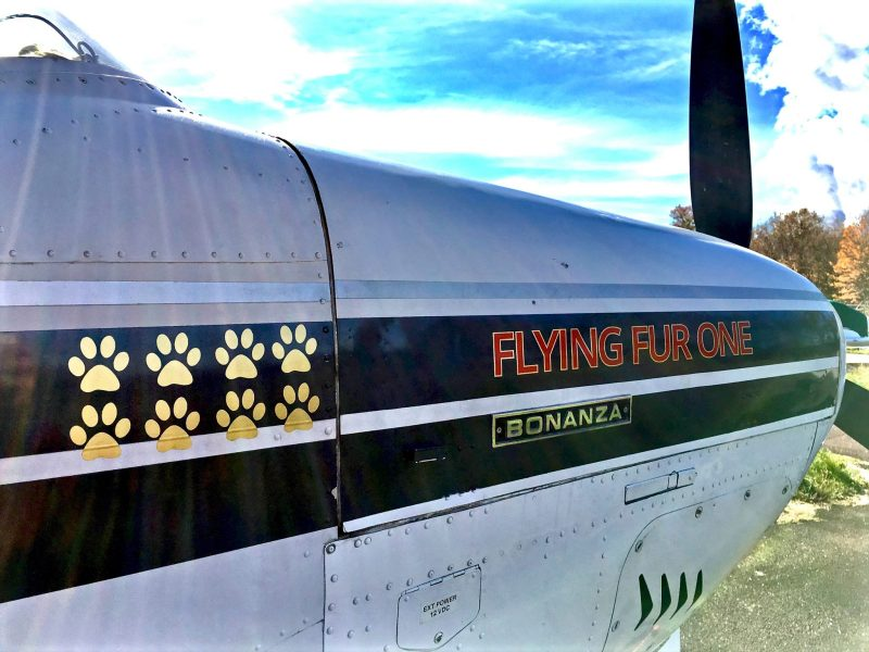 Paul's Flying Fur One plane. Credit Flying Fur Animal Rescue
