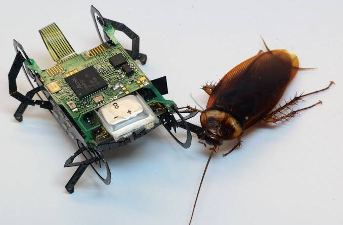 Robotic cockroach
