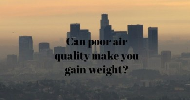 Can poor air quality make you gain weight?