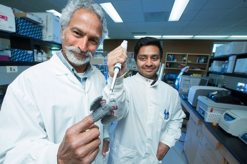 USask student Arinjay Banerjee (right) and professor Vikram Misra (left) posing with a bat finger puppet.