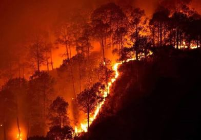 Scientists didn't expect wildfires this terrible for another 30 years