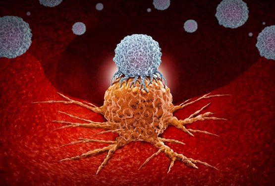 tumour cells