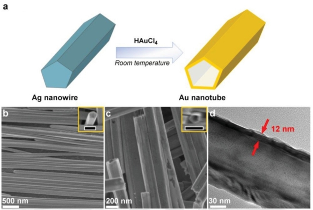Gold nanotubes from silver nanowires