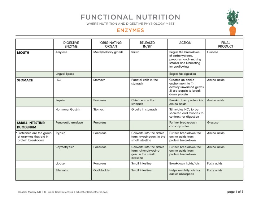 Functional Nutrition - Human Body Detectives