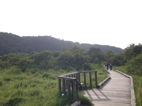 Kushiro shitsugen National Park