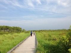 Kushiro shitusgen National Park