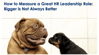 Photo of How to Measure a Great HR Leadership Role: Bigger is Not Always Better