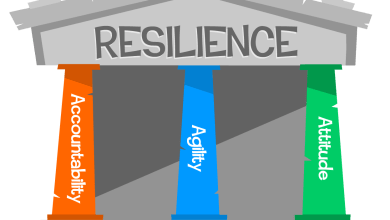 Photo of The 3 pillars of human resilience