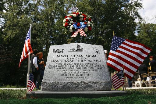 In memory of Cena, a K-9 hero.