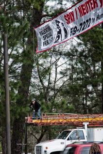 HS-banner--(10)